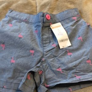 New with tags girls Gymboree flamingo shorts.